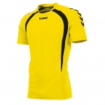 team-t-shirt-yellow-black.jpg
