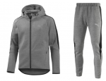 Puma Evostripe Grey suits
